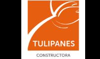 Constructora Tulipanes